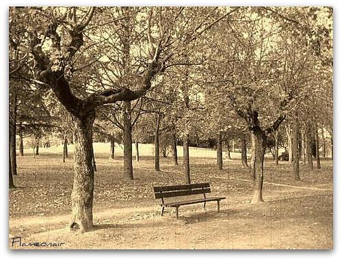 Nel parco un ricordo
