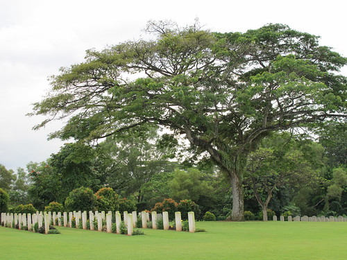 Kranji memorial tree 1 by Brian Spittle