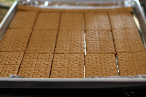 graham crackers, spread out