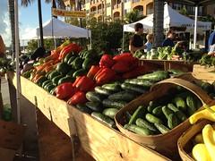 Fort Pierce Farmers Market