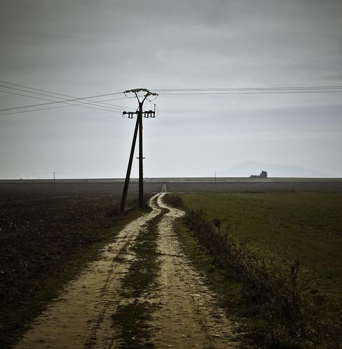 """100/365 """"Largo camino hasta las 365"""" by Flickr Jiménez (Pedro Nog)"""
