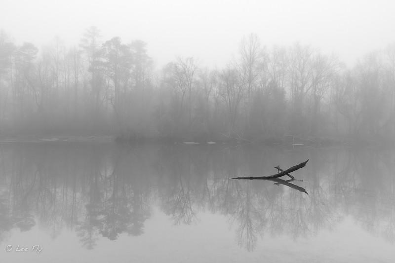 on any foggy Sunday