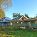 Brockwood Park School Pavilions Nov 2011