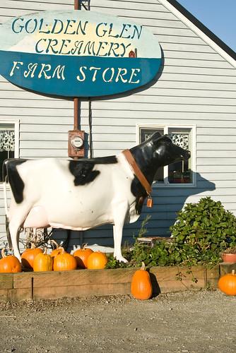 the farm store