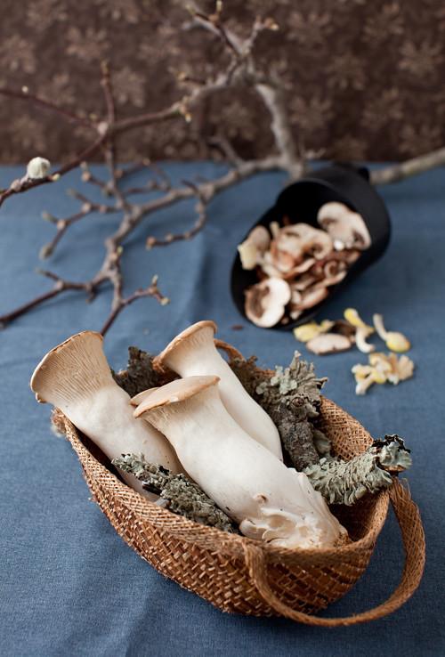 Mushrooms_Madeira_Sauce_1