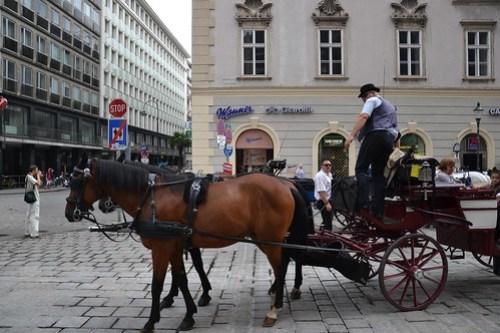 Carro de caballos en Stephansplatz