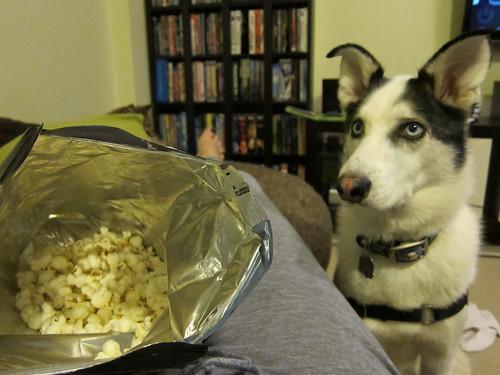 Popcorn Mooch