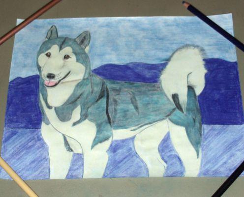 The Natasha Colored Pencil Sketch