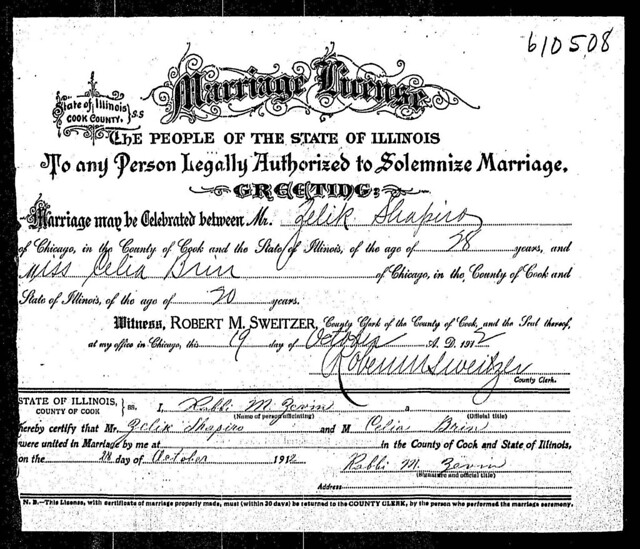 BRIN_SHAPIRO_Illinois,_Cook_County_Marriages_1871-1920_4271761_1144