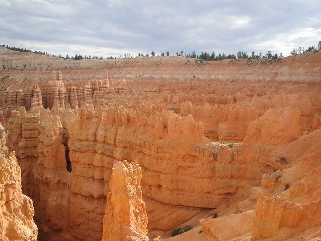 Spires in Bryce Canyon