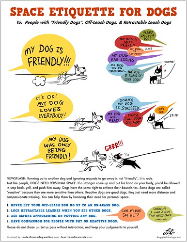 Space Etiquette For Dogs