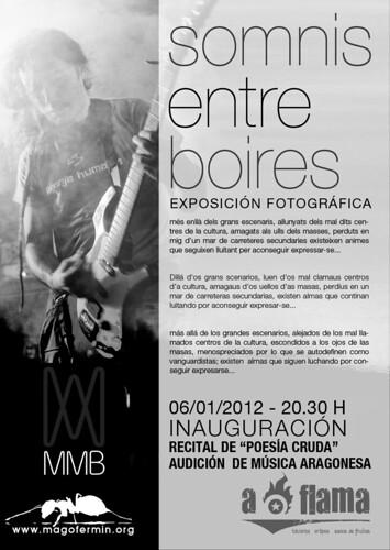 SOMNIS ENTRE BOIRES - Exposició de fotografia sobre grups de música