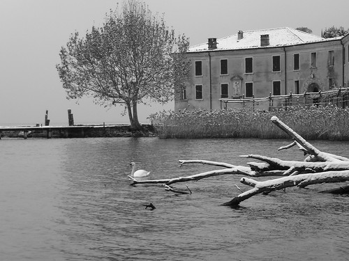 swan at san vigilio