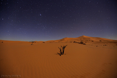 Startrails with Dunes by TARIQ-M