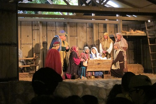 Living Nativity Santa Clara CA