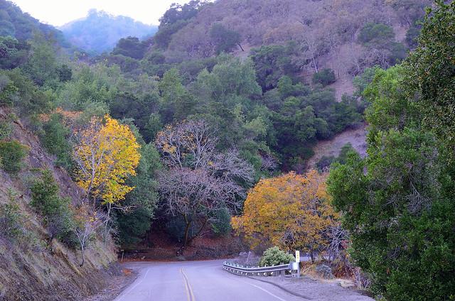 Calaveras Road