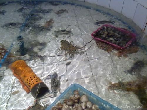 Iloilo Seafood