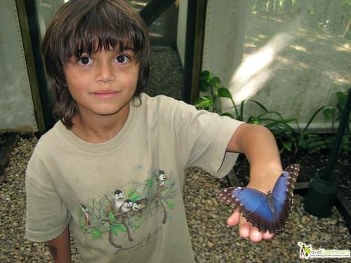 kids love belize wildlife