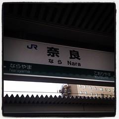 奈良、着いたー!