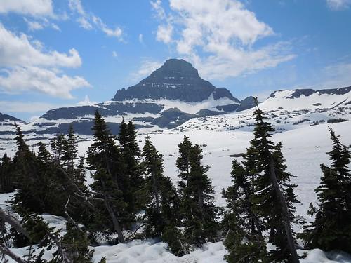 Skiing in July Anyone?