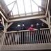 Balcony - Brockwood Park School Pavilions Project