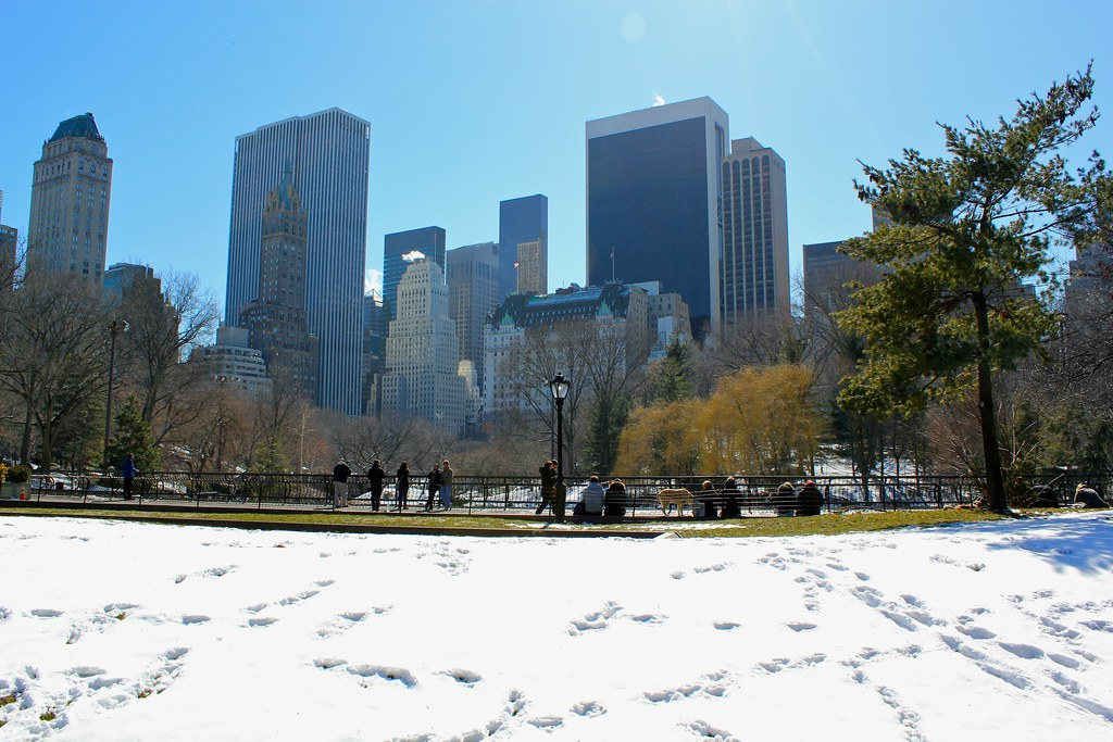 Late Winter in Central Park South
