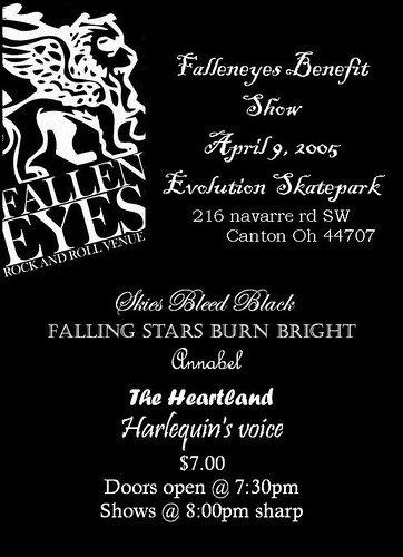 Skies Bleed Black Flyer