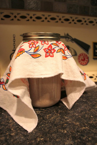 20120202. adventures in sourdough - my little desert-dwelling jar.