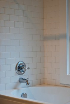 May project shower