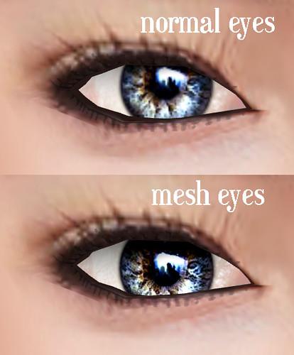normal eyes vs mesh eyes