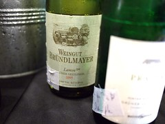 Weingut Brundlmayer Lamm 2009, Grüner Veltliner from Austria, World Gourmet Series Wine & Restaurant Experience 2011 WRX Wine Journey