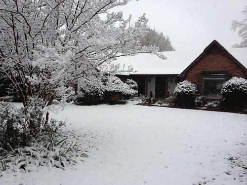 Snow Dec 2011 by Irish Clover