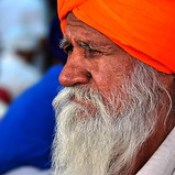 India - Punjab - Amritsar - Golden Temple - Sikh - 251