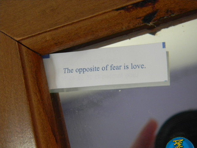 """""""The Opposite of Fear is Love."""""""