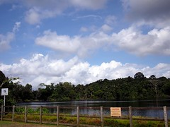 Disused Quarry, Pulau Ubin