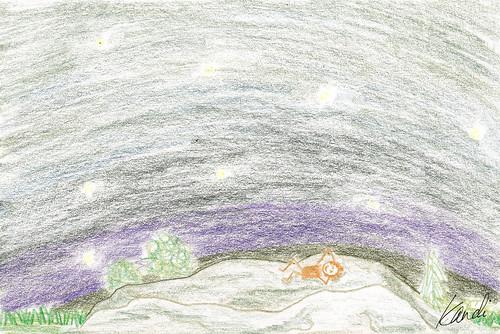 Star Gazing Rock 8-25-11r by Kandi Rose