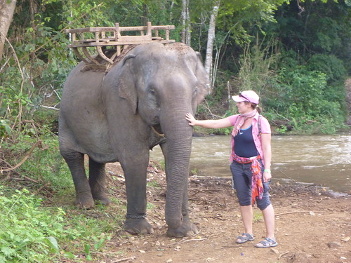 Lol saying goodbye to the elephant