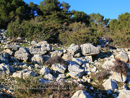Megalithic blocks by the road to the top of Vrcevo hill