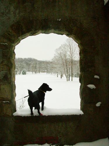 Sime in the window