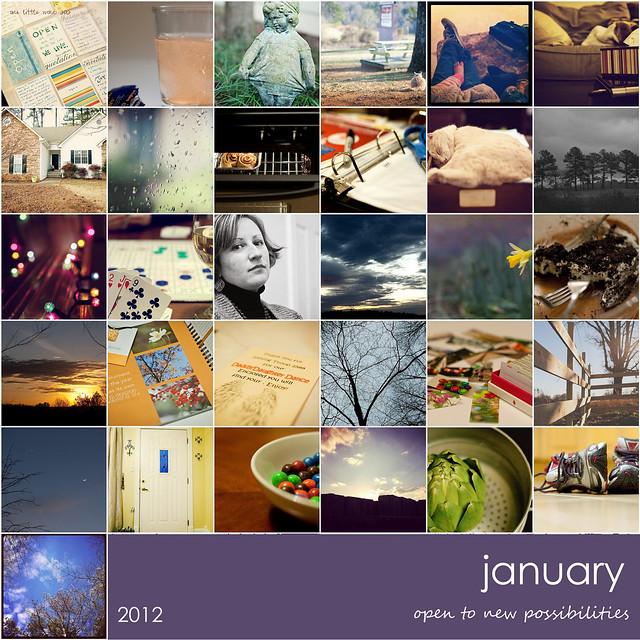 2012 january in a nutshell