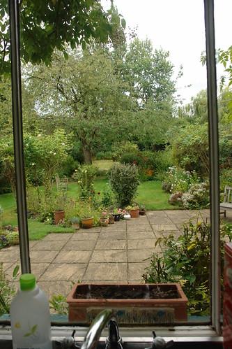 Birmingham House Back Garden from Kitchen