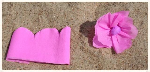 Soorten strandbloemen (7)