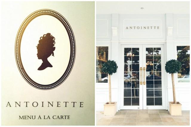 Antoinette & Vday3