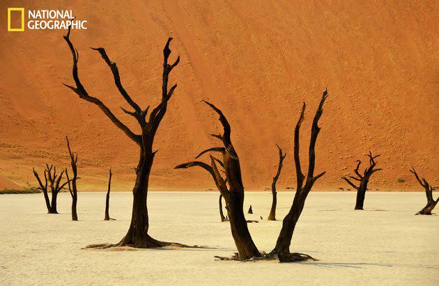 Dead Vlei Landscape, Namibia.