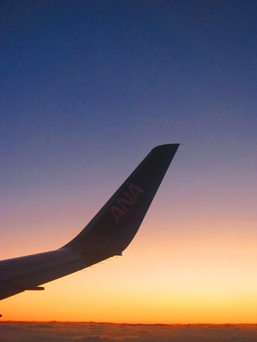 WingPhotography3_02_Late