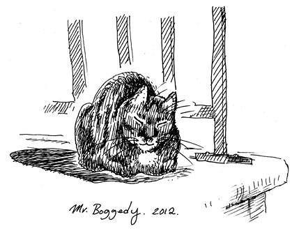 MrBoggedy