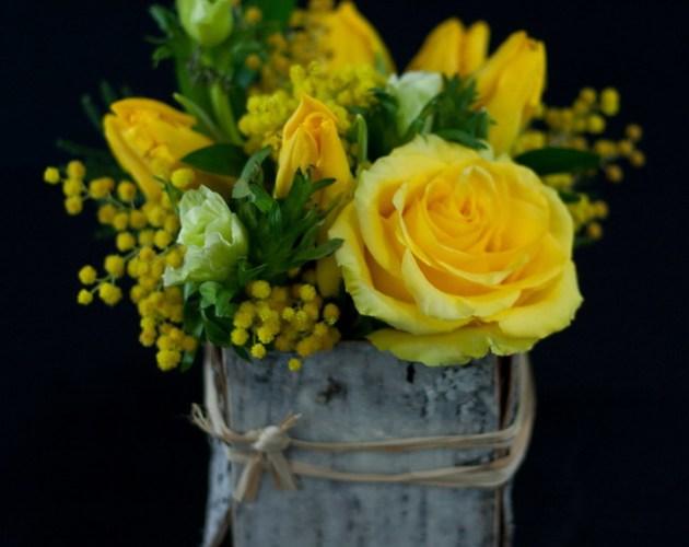 Yellow flowers in birch