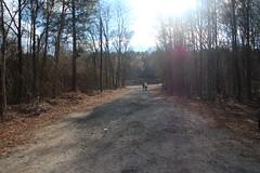 Kingville Road