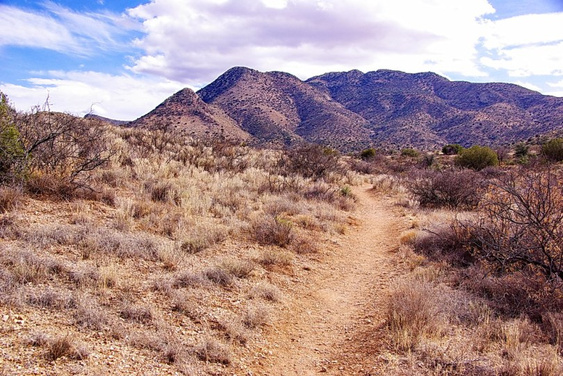 Trail to Fort Bowie