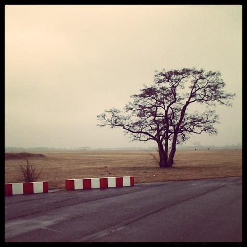 Ganz schön grau heute. #flughafen #tempelhof